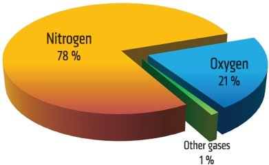 میزان اکسیژن هوا فقط 21% اسد